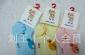 批发纯棉卡通儿童袜子 尼多熊品牌袜B613-3